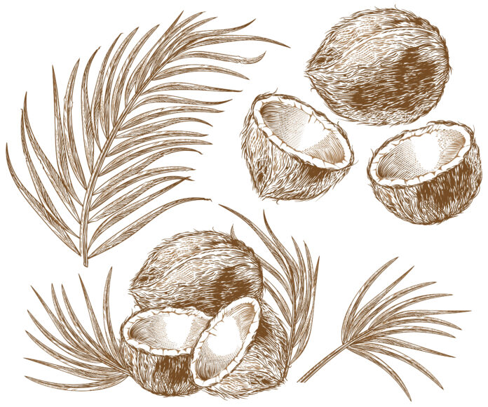 is coconut oil good for your hair