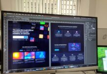 10 Web Development and Web Design Facts That You Should Know