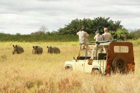 National Parks in Kenya