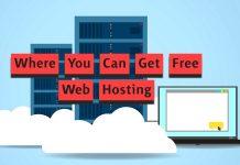 Web Hosting - Website Development